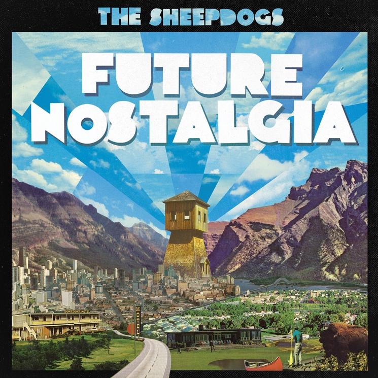 sheepdogs4.jpg
