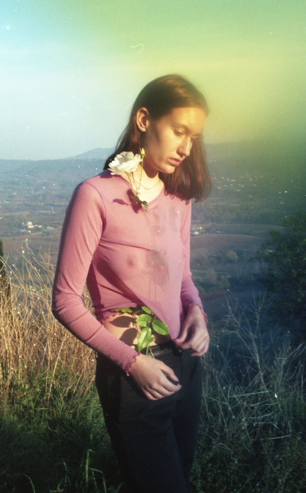 rosemorgan.jpg