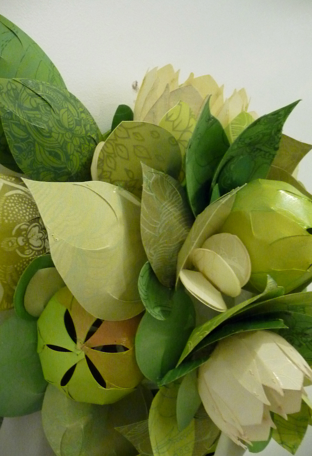 Tulips and Tomatillos