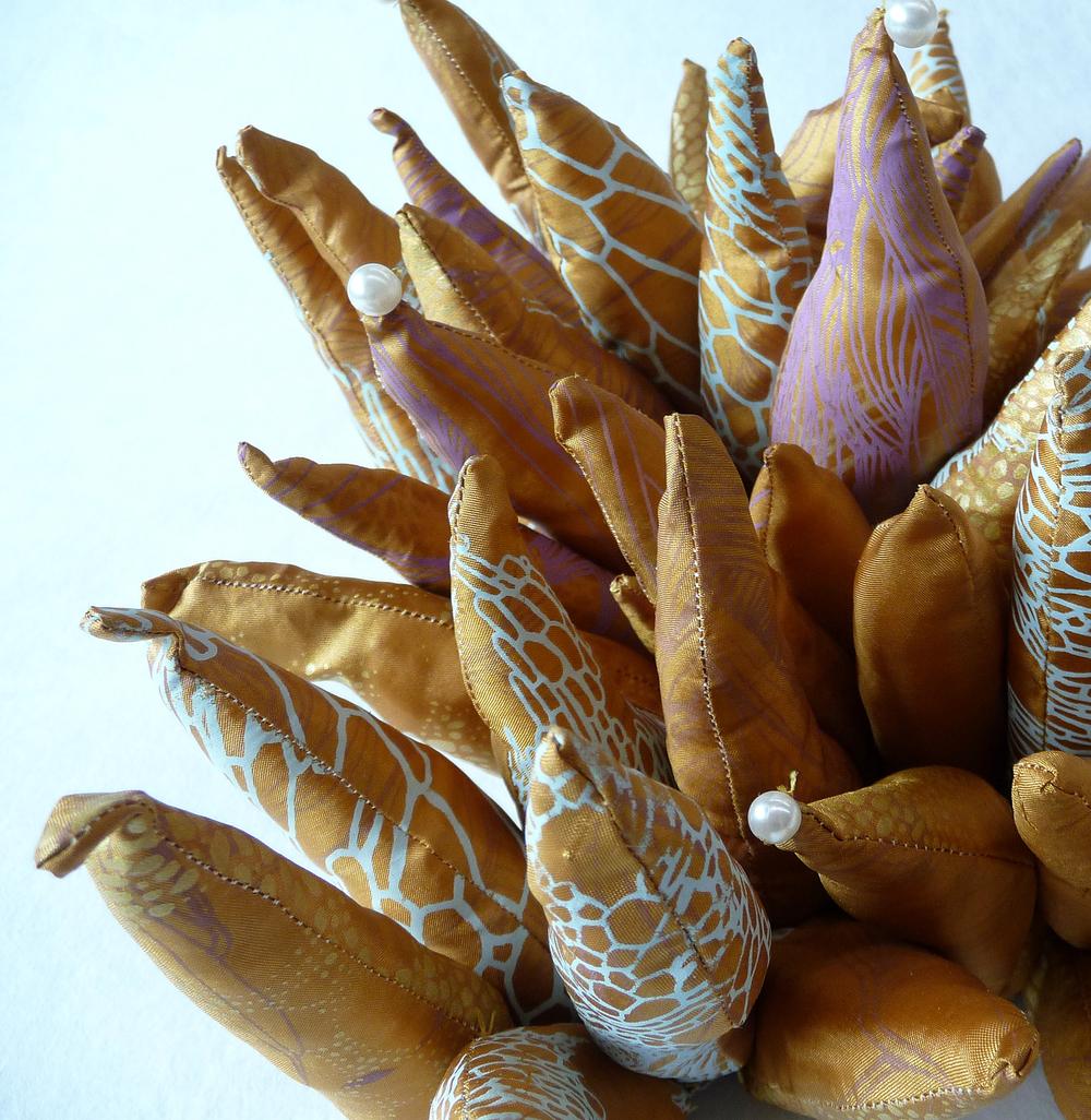 Bugle Urchin
