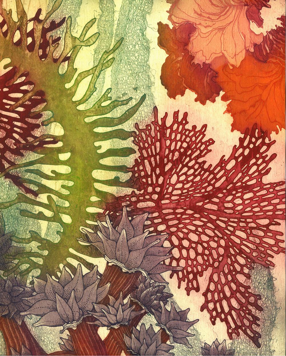 "Sea Reef Chorus   Intaglio  11x14""  2015   Included in the exchange portfolio ""Rebirth"""