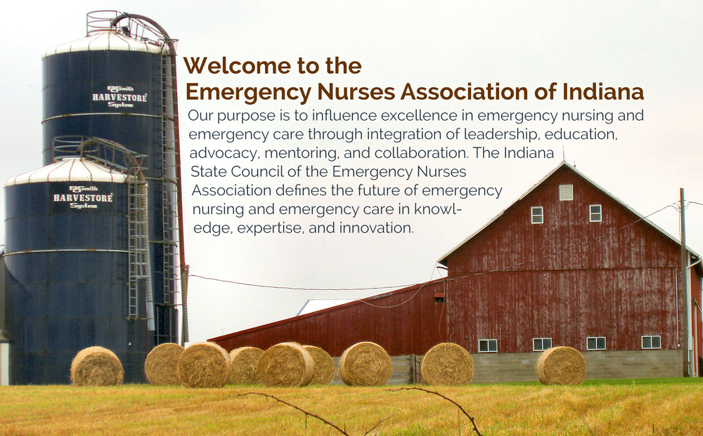 Welcome to Emergency Nurses Association of Indiana- Our purpose is to influence excellence in emergency nursing and emergency care through integration of leadership, education, ADVOCACY, mentoring and collaboration. The Indiana State Council of the EMERGENCY Nurses Association defines the future of emergency nursing and emergency care in knowledge, expertise, and innovation.