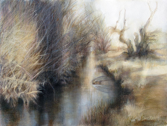 Meadow_Stream_winter_duck_sm.jpg