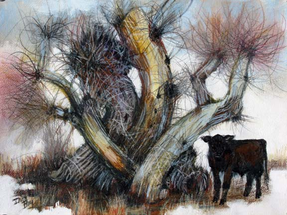 Snow_Calf_Winter_Willows_sm.jpg