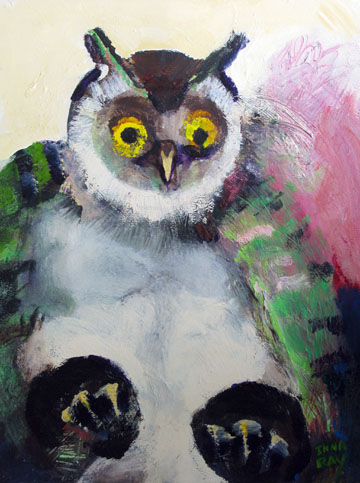 Owl_pudgy_fledgling_sm.jpg