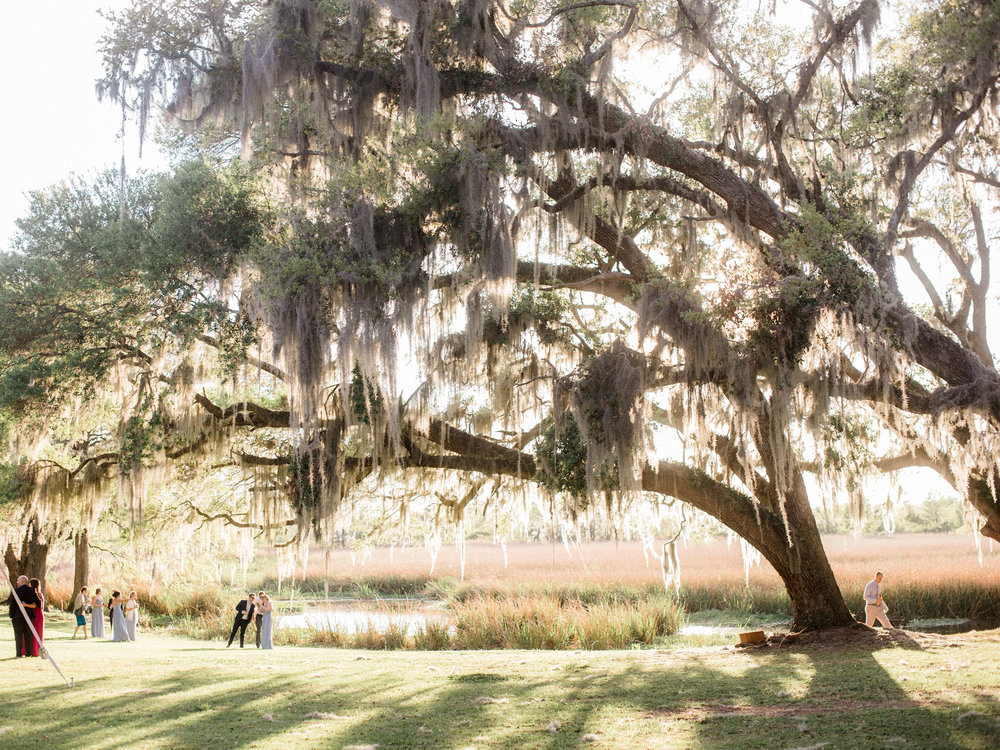 001litchfield_plantation.jpg