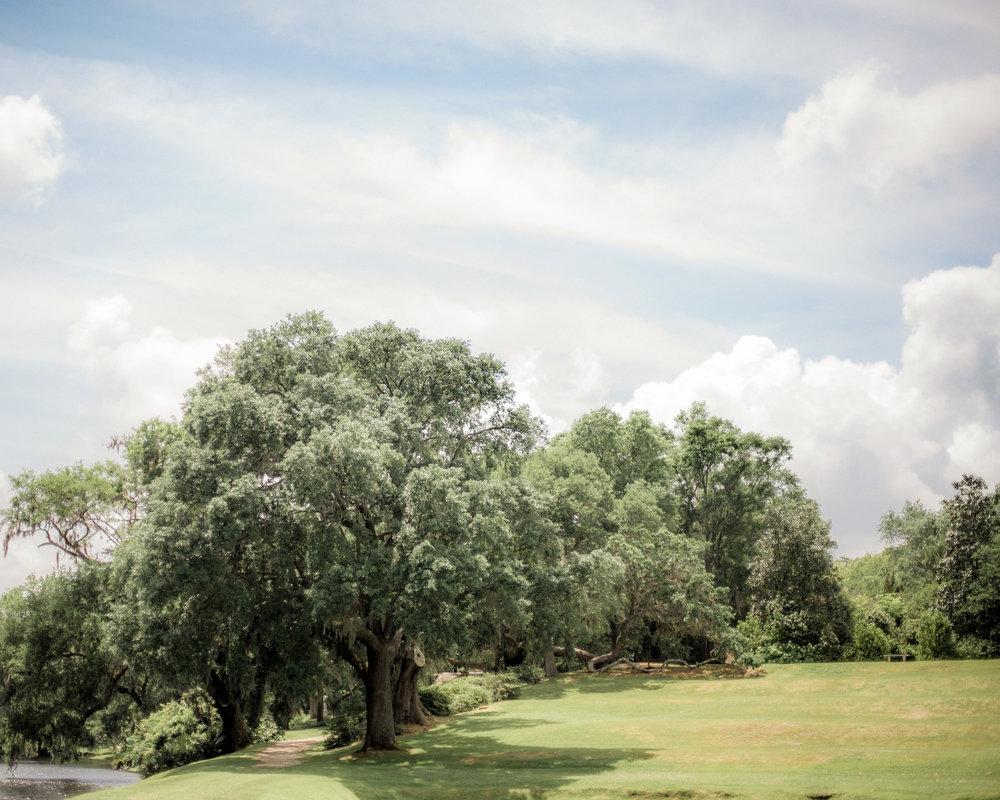 15Middleton_plantation.jpg