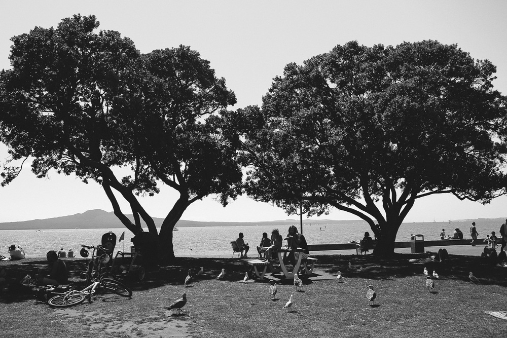 new zealand auckland black and white travel blog photography mission bay