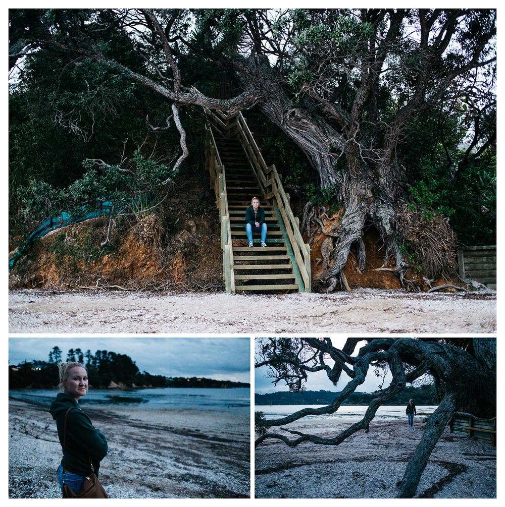 waiheke-island_0012.jpg