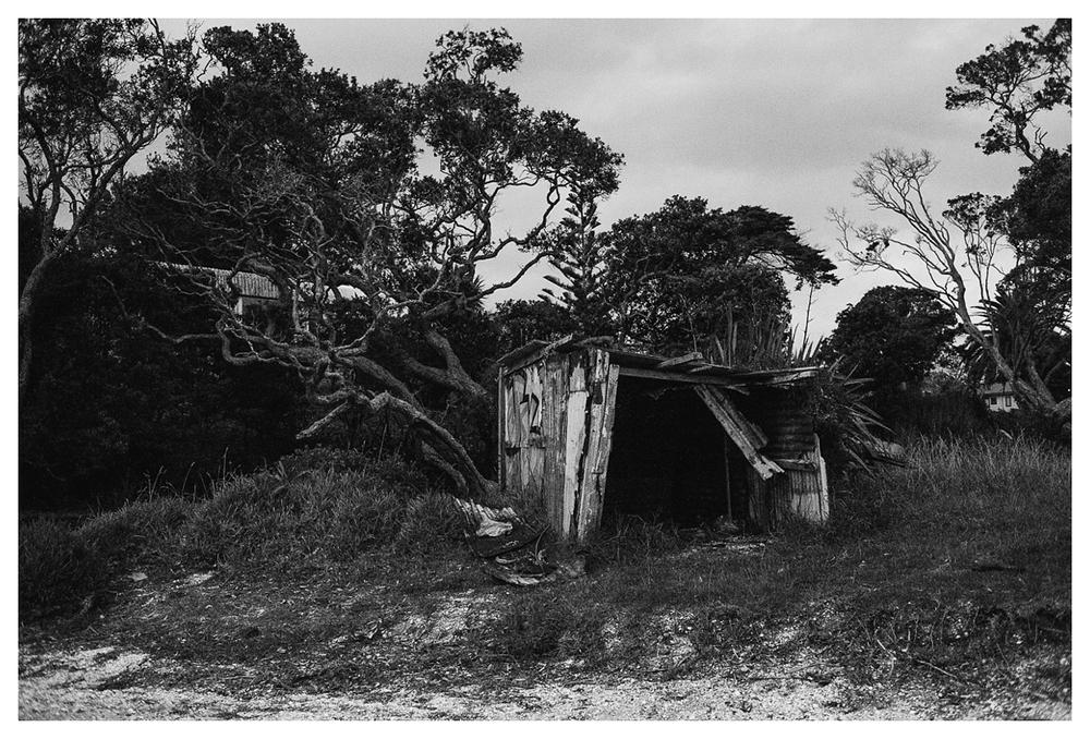 waiheke-island_0016.jpg