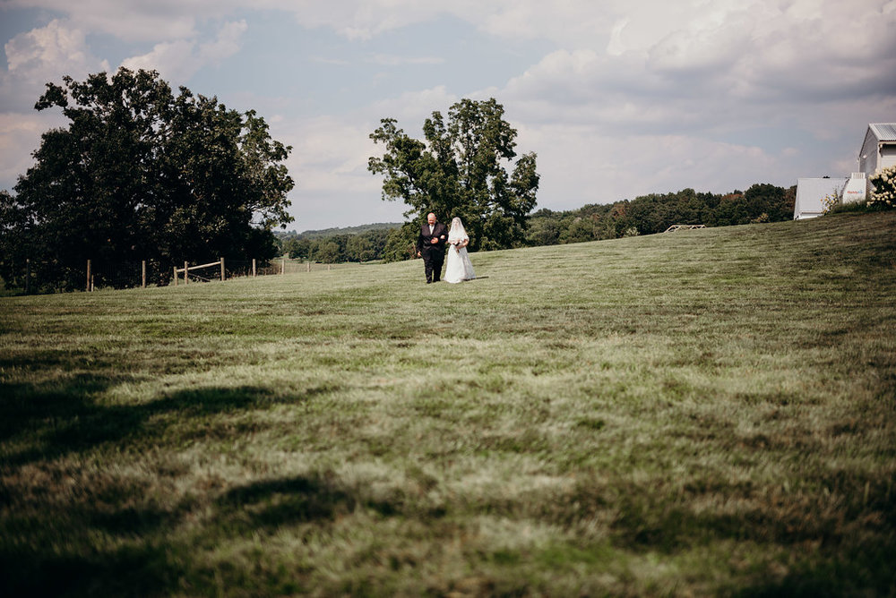 on-sunny-slope-farm-harrisonburg-wedding-virginia-8813.jpg