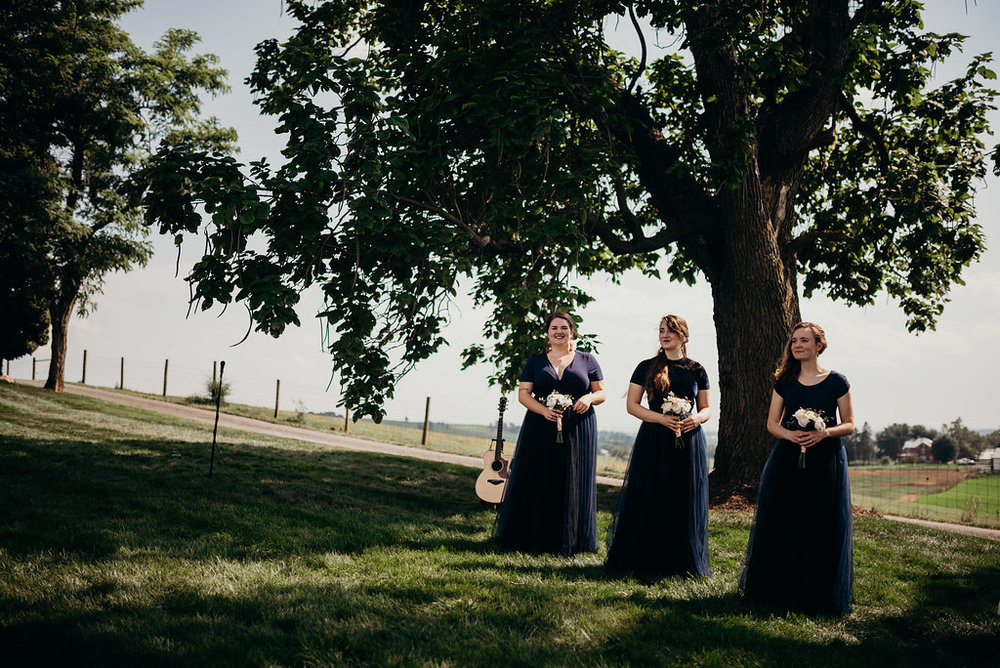 on-sunny-slope-farm-harrisonburg-wedding-virginia-8865.jpg
