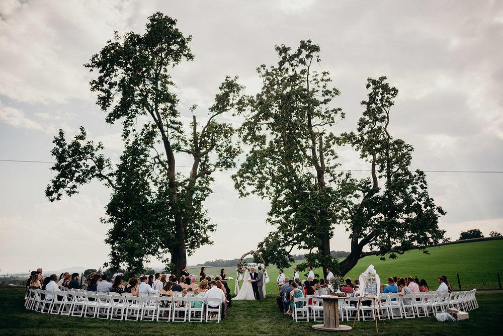 on-sunny-slope-farm-harrisonburg-wedding-virginia-9170.jpg