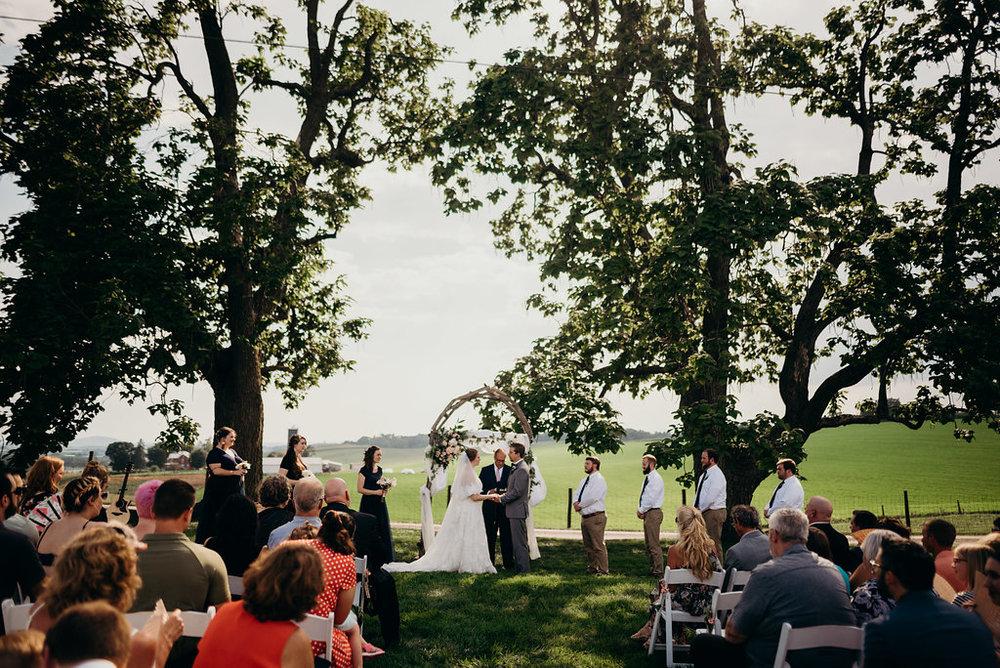 on-sunny-slope-farm-harrisonburg-wedding-virginia-9176.jpg