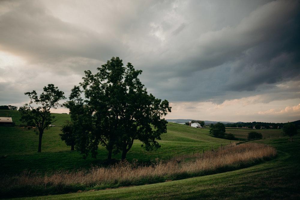 on-sunny-slope-farm-harrisonburg-wedding-virginia-9554.jpg