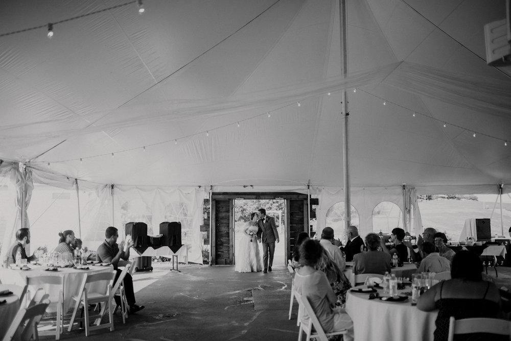 on-sunny-slope-farm-harrisonburg-wedding-virginia-9042.jpg