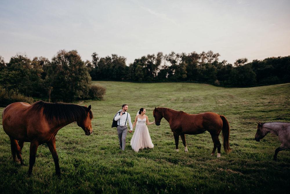 rixey-manor-northern-virginia-wedding-rixeyville-va-0564.jpg
