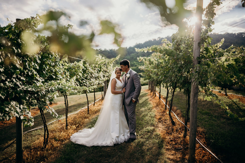 virginia-wedding-delfosse-vineyard-lindsey-paradiso-photography-6959 (1).jpg
