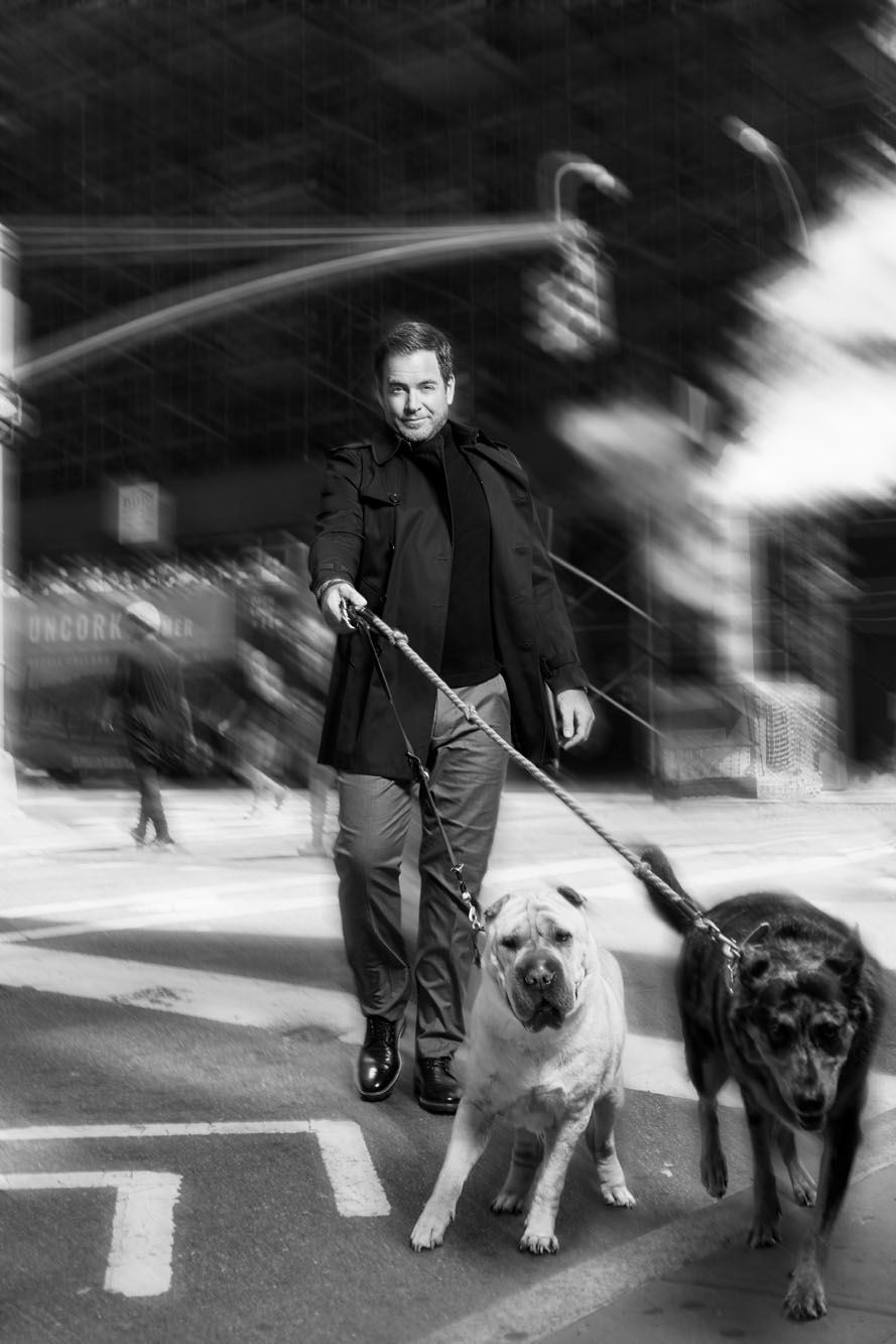 CBS Watch Michael Weatherly 12.jpg