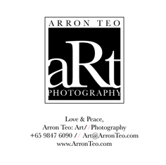 Aaron Teo Art Photography logo
