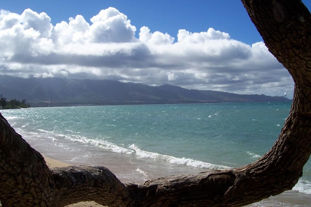 Kiteboard Beach2.jpg