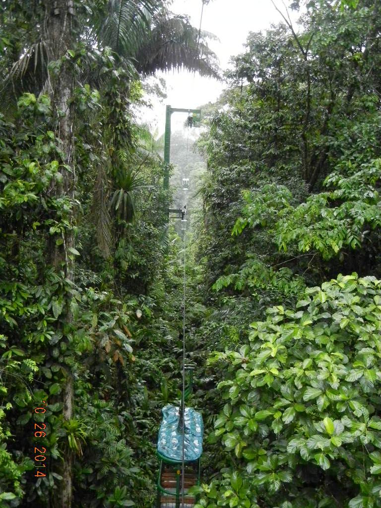 Rain Forest Tour_0054.JPG
