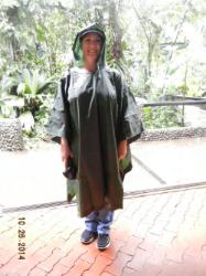Rain Forest Tour_0075.JPG