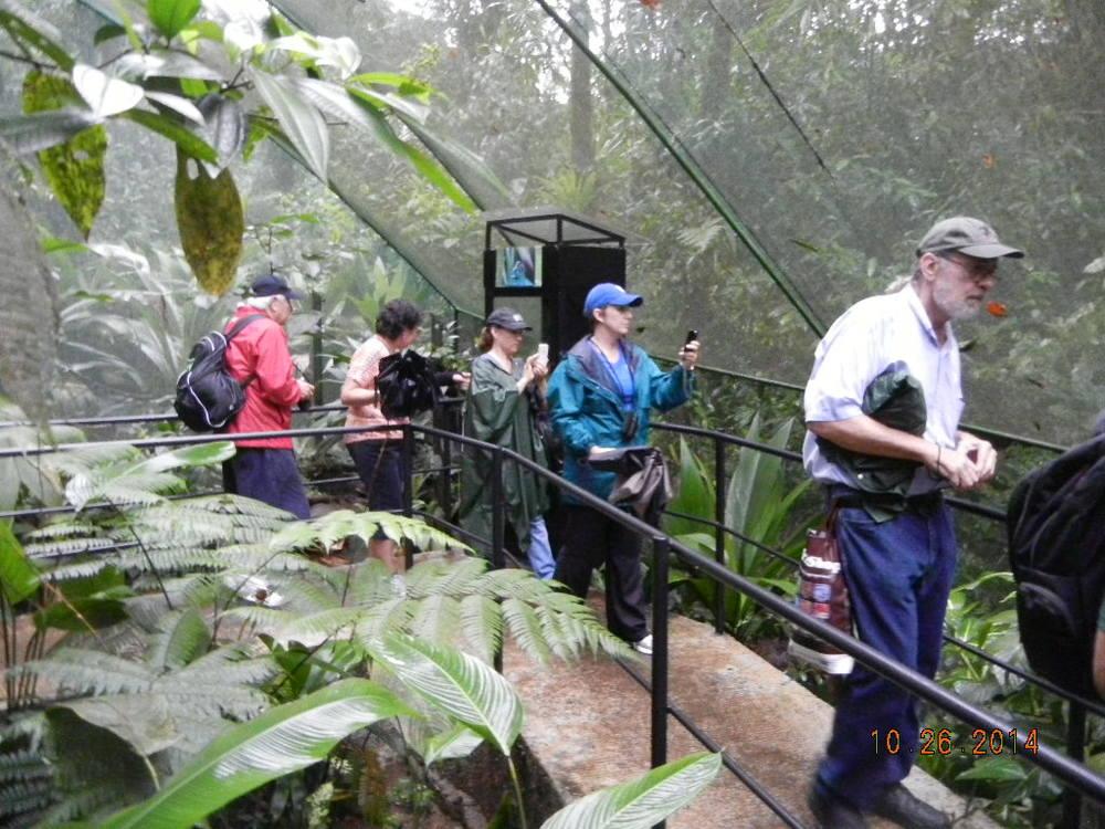 Rain Forest Tour_0101.JPG