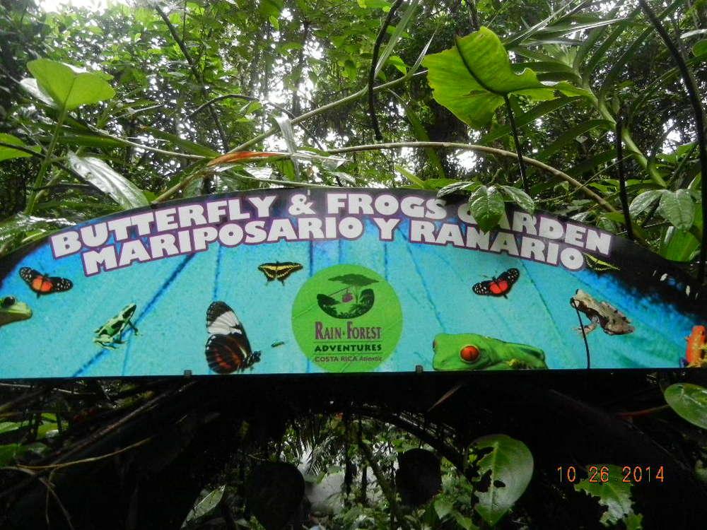 Rain Forest Tour_0094.JPG