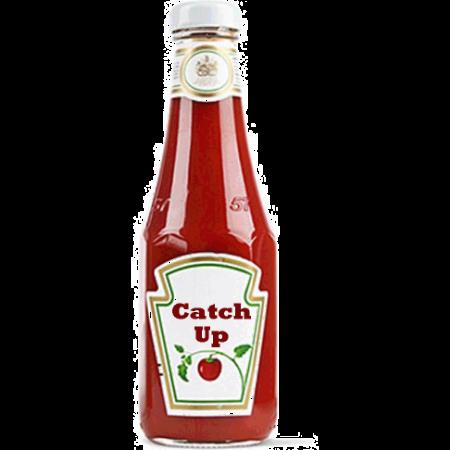 ketchup bottle - catch up-no bkgrd.jpg