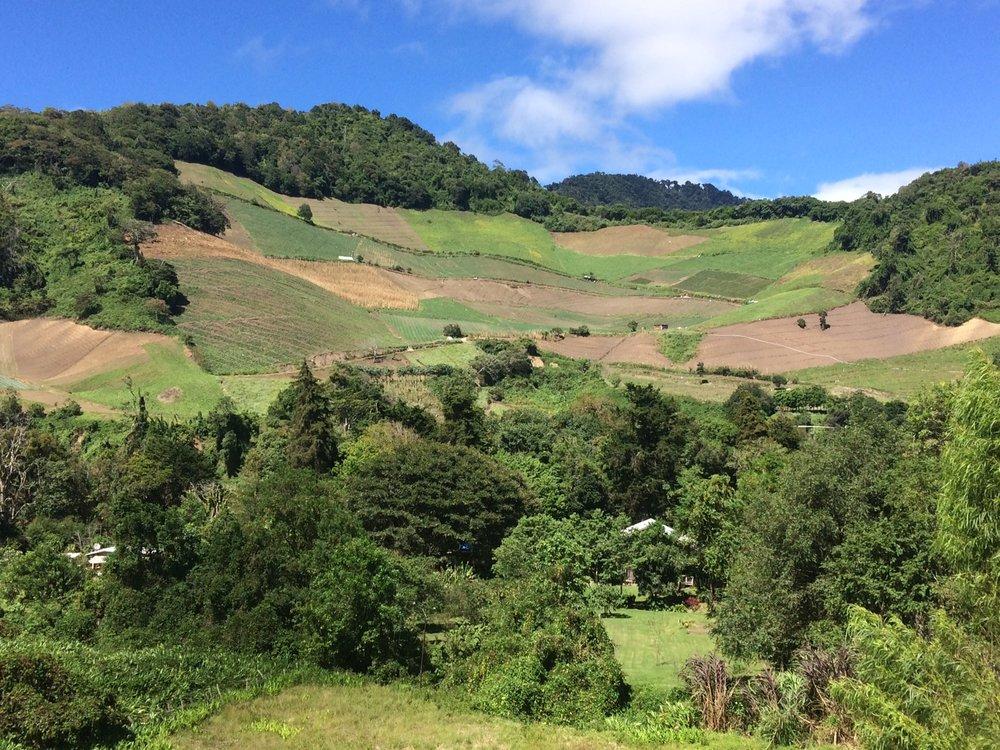 Amazing farming on the mountainsides