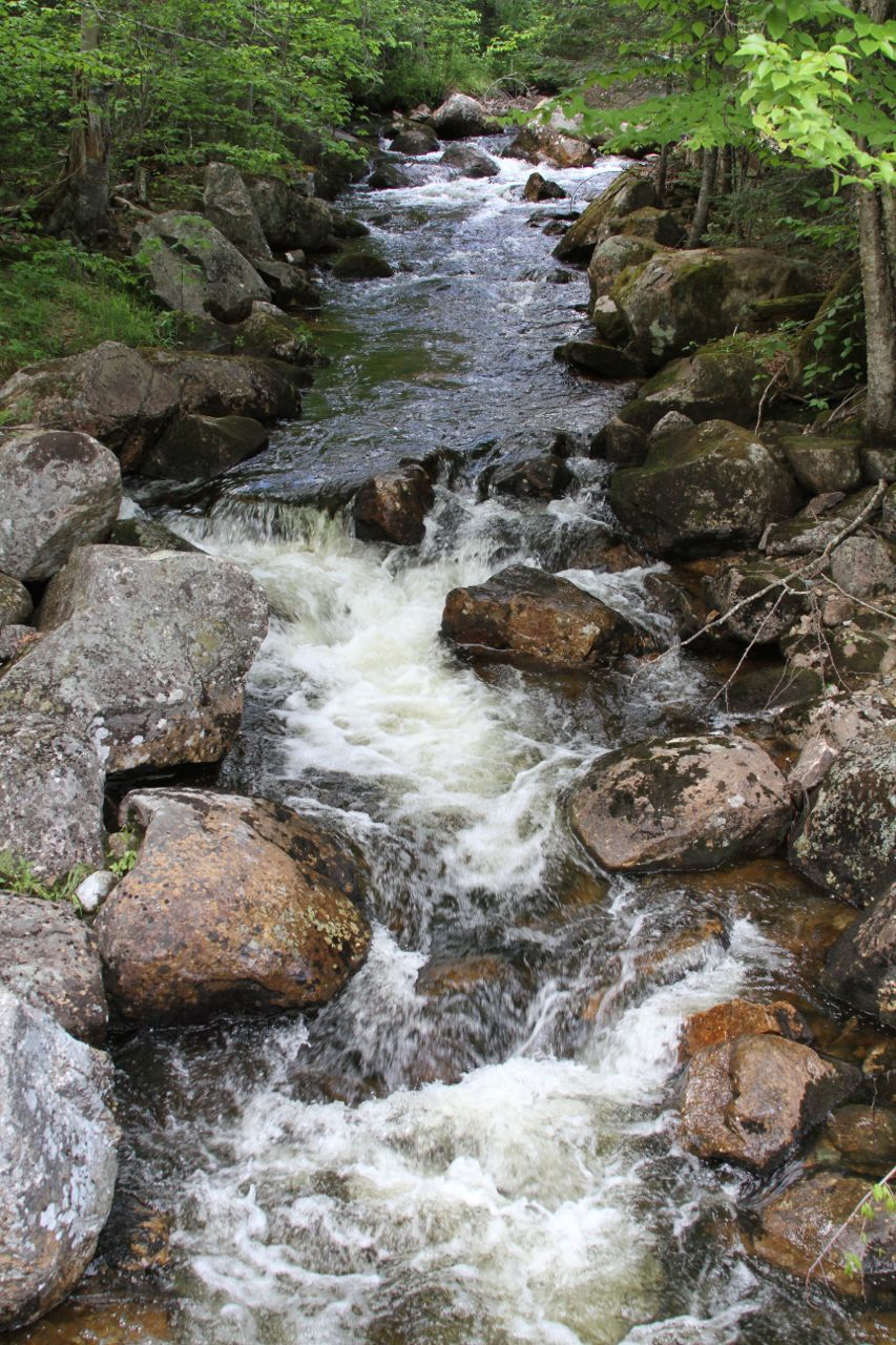 stream-white-mountains.jpg