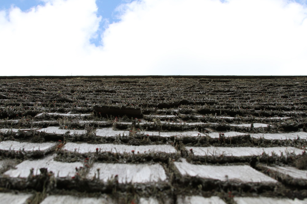thatch-roof-sky.jpg
