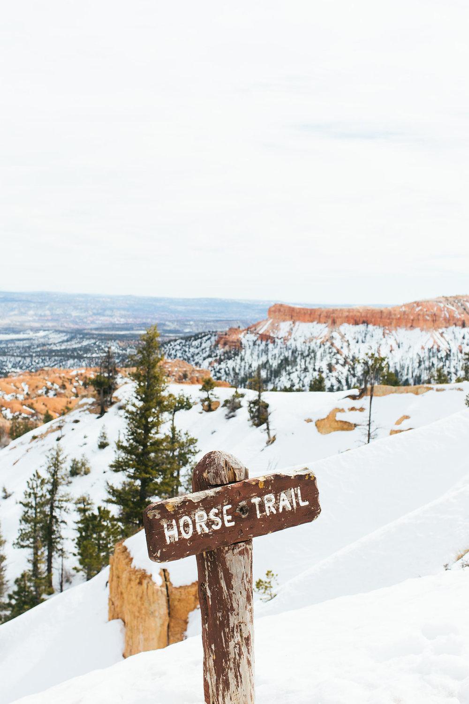 Utah65.jpg
