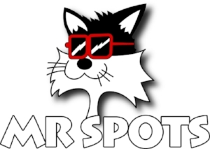 SITM is powered by Mr. Spots of Ann Arbor