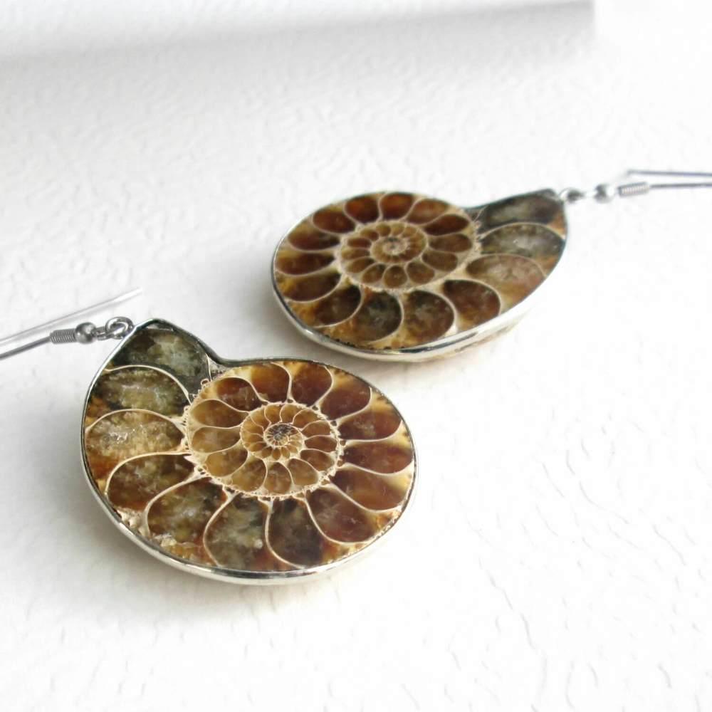 Large Fossil Ammonite Earrings