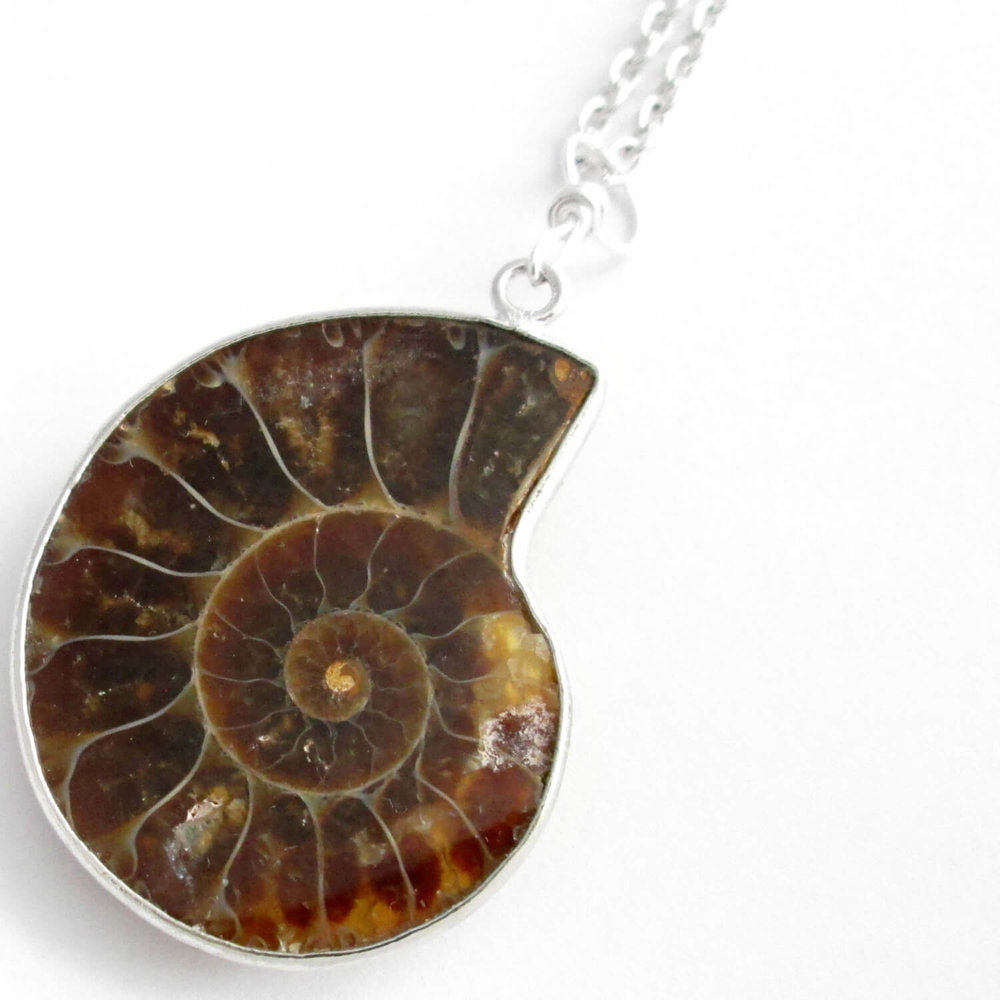 Large Ammonite Pendant