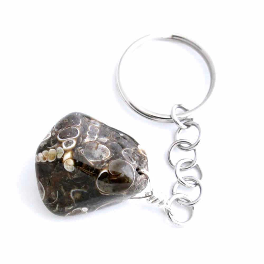 Turritella Fossil Key Chain