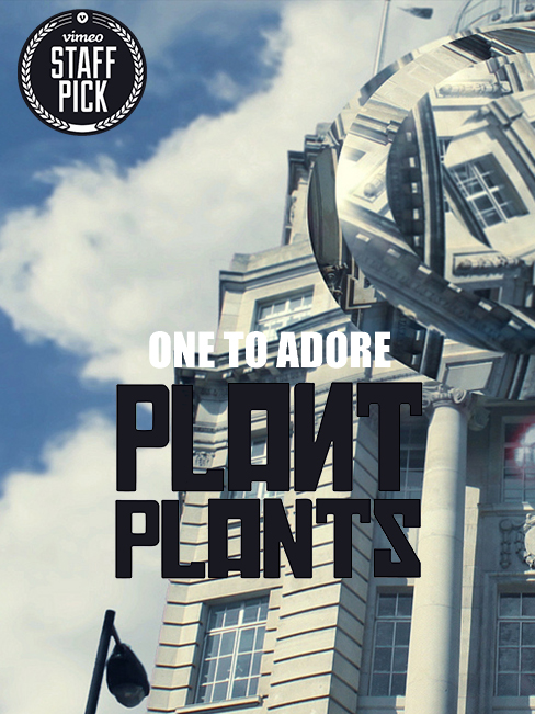 Plant Plants - One To Adore