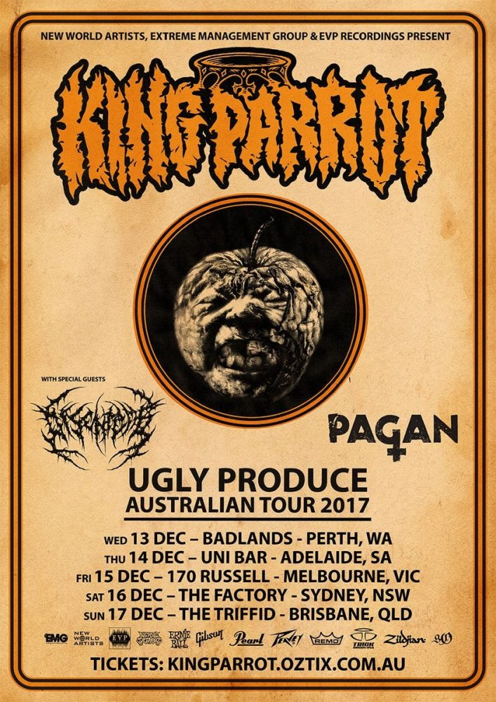 tour2017-kingparrot.jpg