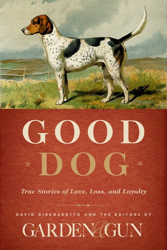 This book is on the top of my list for my fellow dog lovers! PS David Dibenedetto has a boykin spaniel as well :)