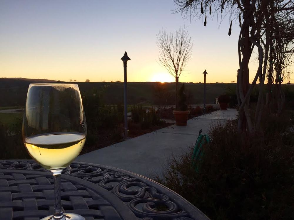 A picture from our beautiful B&B in Paso Robles. I'll tell you all about our CA trip next week!
