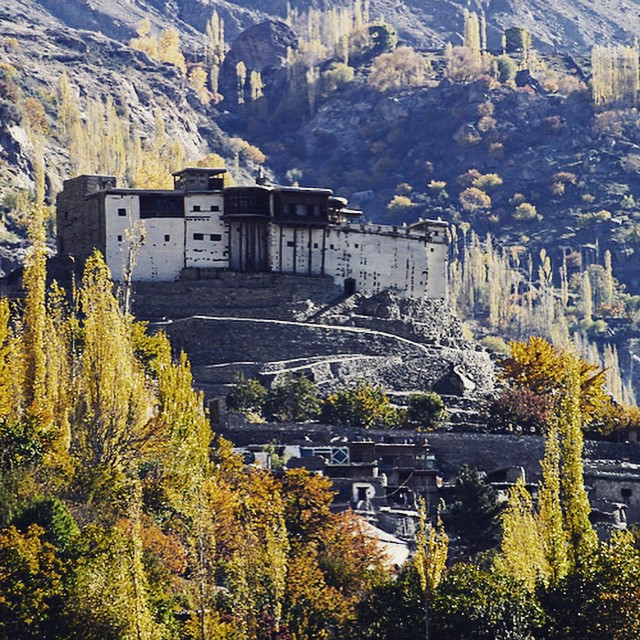 We were in Hunza valley this weekend. This picture shows the Hunza fort carved on top of a hill. Absolutely stunning! #beautiful #culture #heritage #fort #valley #nature #trees #pakistan