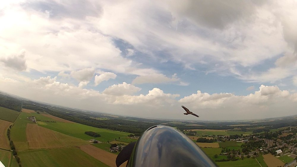 Go pro view from a hang glider with hawk in the background and blue sky with clouds