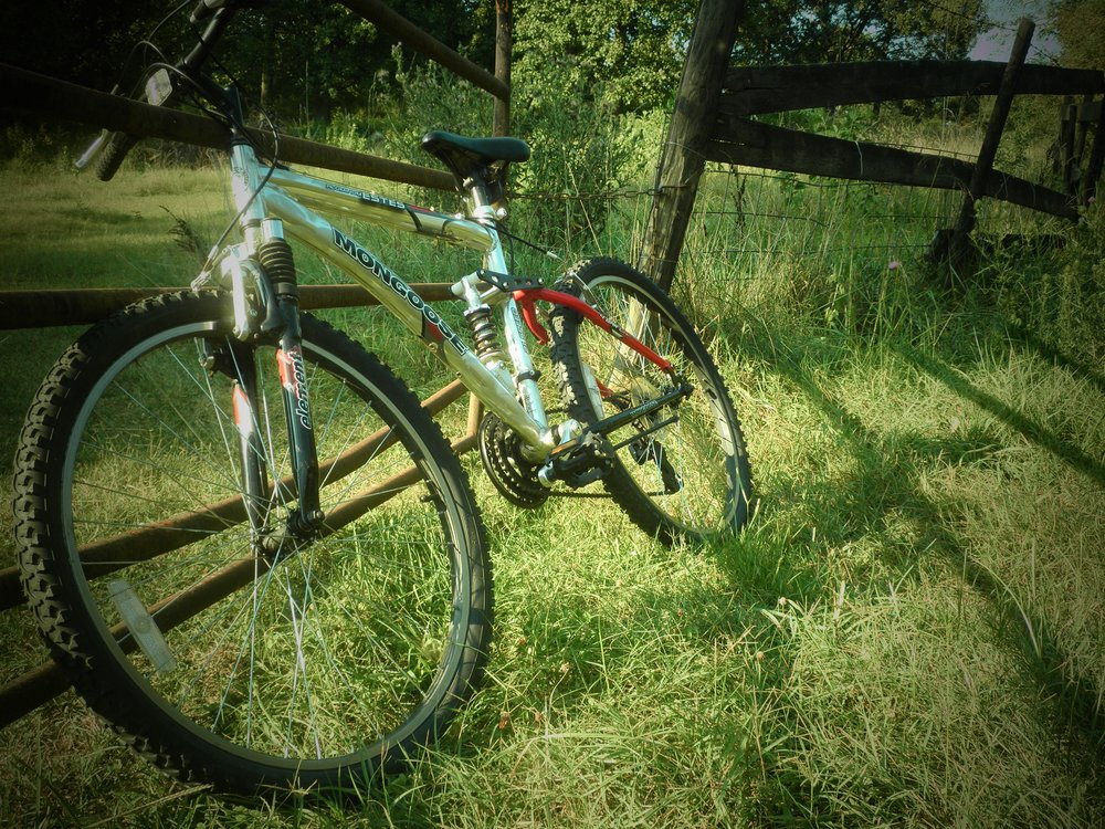Mountain bike in green grass resting against rustic wood fence