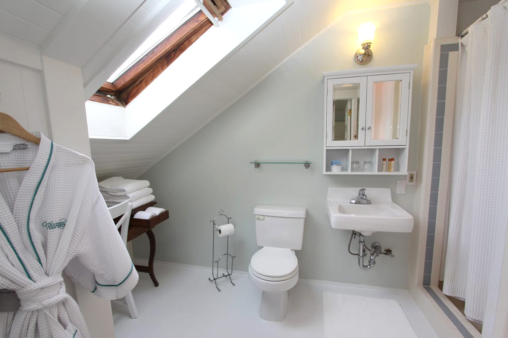 Private bath with large vaulted skylight