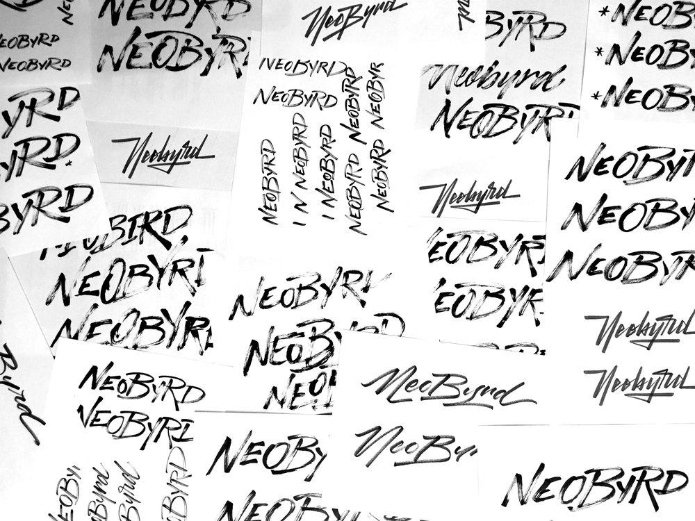 NeobyrdLogoSketchesbyNoahCamp