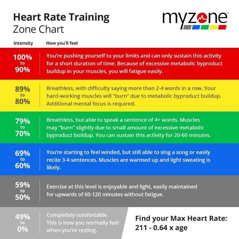 MYZONE levels.jpg