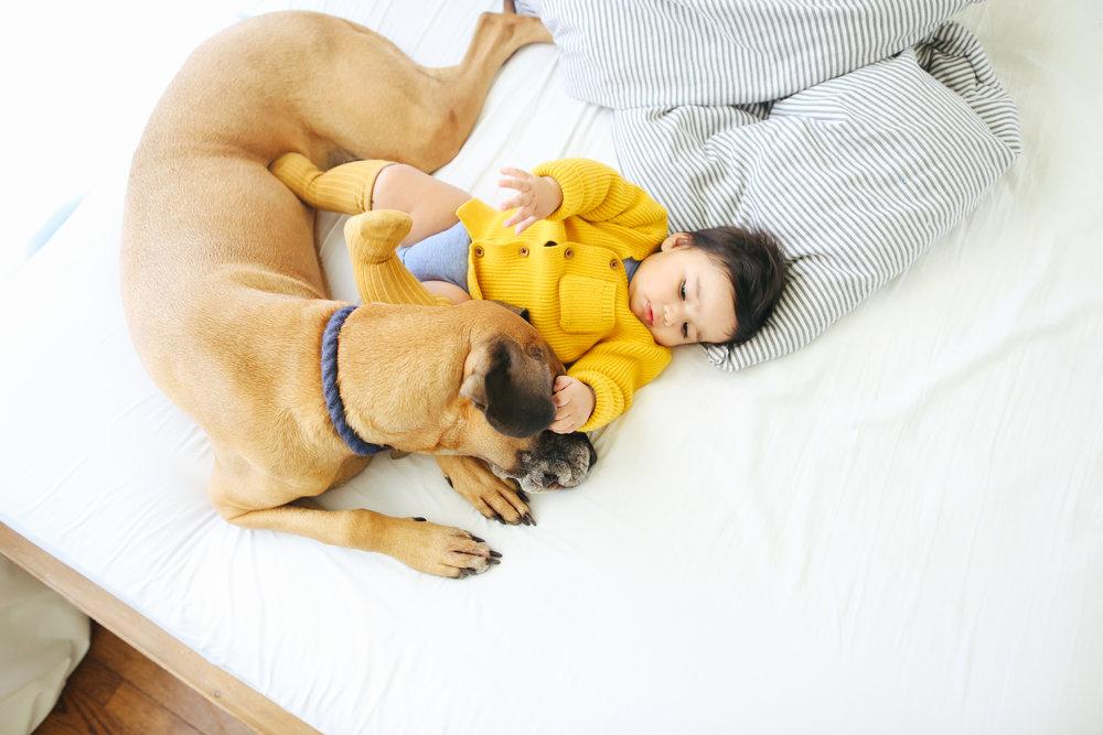 Serious cuddle buddy.