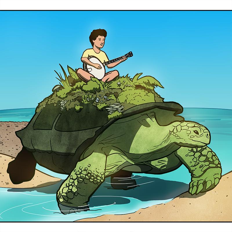 Happy, Magic Boxes - Turtle